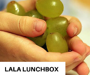 Meal Planning for Kids: LaLa Lunchbox to the Rescue
